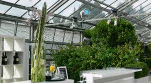 Eine Bar ohne Hintergrund wirkt manchmal verlassen. Miete Pflanzen!