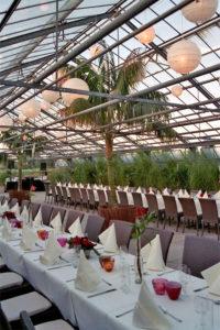 Große Karibik Palme Kentie auf einer Veranstaltung in Frankfurt
