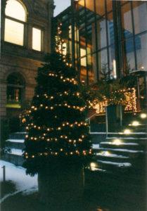 Christbaum im Topf feuerfest B1 mit Lichter Kette Indoor & Outdoor