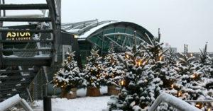 Tannenbaum Wald mit Lichter Kette zur Winter Deko an Weihnachten