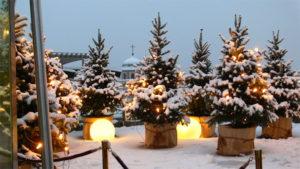 Tannenbaum Wald mit Lichter Kugel Deko für Advent und Weihnachten