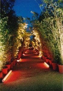 Bambus Walkway mit Atmosphäre und Beleuchtung auf Event in Frankfurt