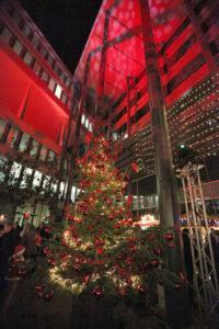 Für die Weihnachtsfeier können Sie bei uns einen Weihnachtsbaum mieten.