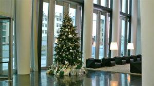 Bei uns können Sie einen hohen Weihnachtsbaum mieten. Durch die üppige Event Dekoration der Mietpflanze ergibt sich ein glamouröser Tannenbaum.