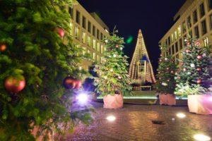 Weihnachtsdorf: mehrere Weihnachtsbäume mieten und zusammenstellen.