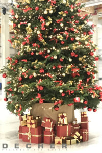 Wer einen Weihnachtsbaum mieten möchte, denkt vielleicht an Dekoration.