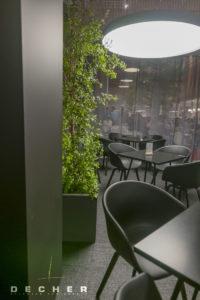 Büsche und Sträucher als Raumteiler im Gastraum | Decher Mietpflanzen