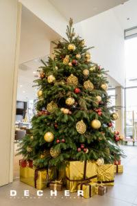 Für Ihr Hotel können Sie einen dekoratvien Weihnachtsbaum mieten.