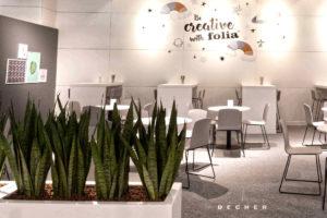 Mit Sansevieria bepflanzte Raumteiler mieten für puristisches Ambiente