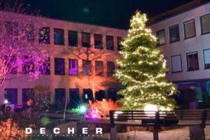 Mieten Sie Ihren Weihnachtbaum! Der Innenhof bekommt durch die mit Lichterketten dekorierte Eventpflanze mehr Anziehungskraft.