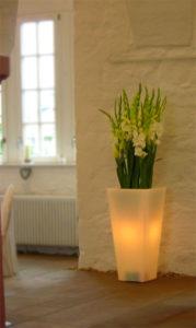 Gladiolen in der beleuchtbaren Bodenvase. Die Vase können Sie mieten.