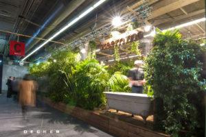 Palmen mieten als grüne Pflanzentrennwand für Jungle Deko für Messe