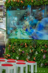 Vertical Green - Living Wall - Urban Gardening: Messepflanzen mieten