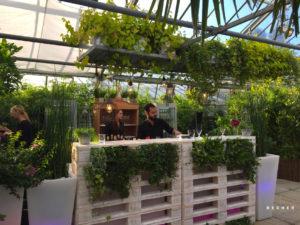 Gewächshaus Decher in Karben bei Ffm mit Pflanzendeko für Vintage-Bar