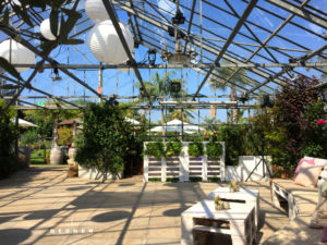 Hochzeitslocation zum Tanzen & Feiern im Glashaus Karben bei Frankfurt