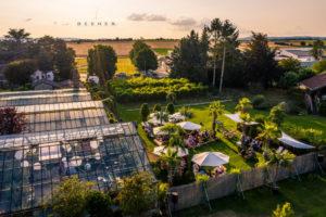 Hochzeit im Gewächshaus Decher in Karben bei Frankfurt